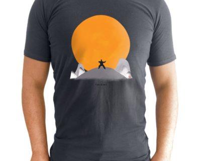 taichi soleil porte face gris 400x320 - Accueil